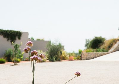 Un paysage méditerranéen