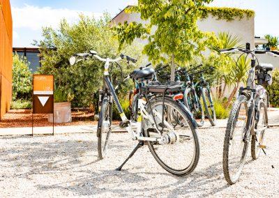 Des vélos électriques pour se promener